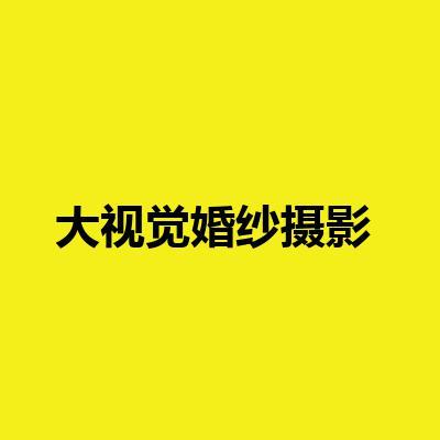 大视觉婚纱摄影(芙蓉广场总店)