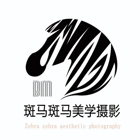 斑马斑马美学摄影(步步高广场店)